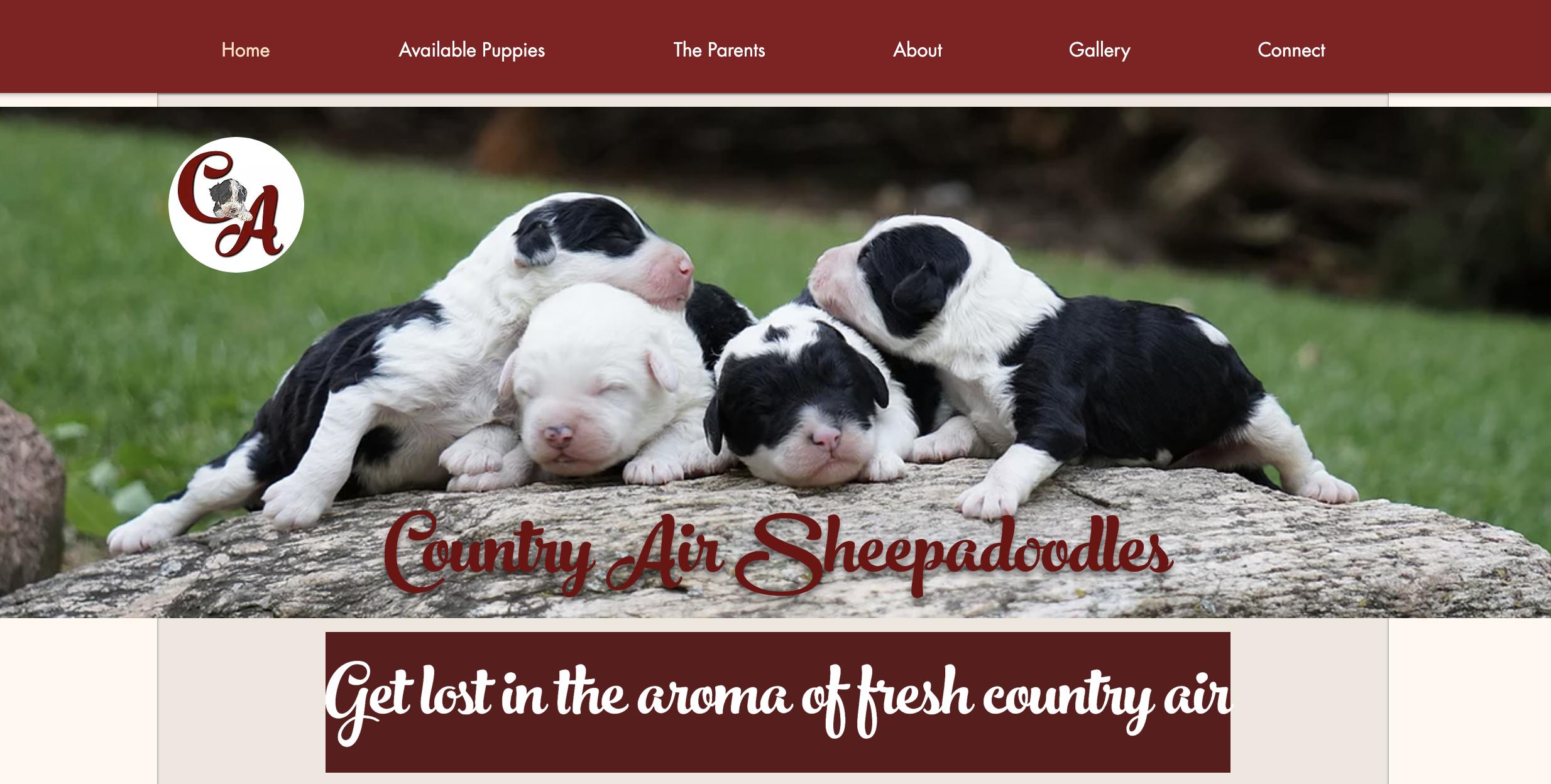 Country Air Sheepadoodles
